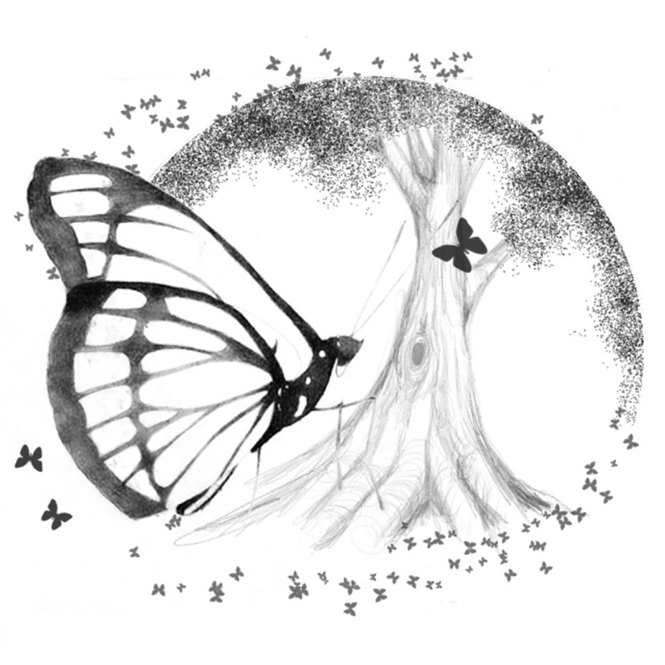 butterfly design drawn by hand in photoshop