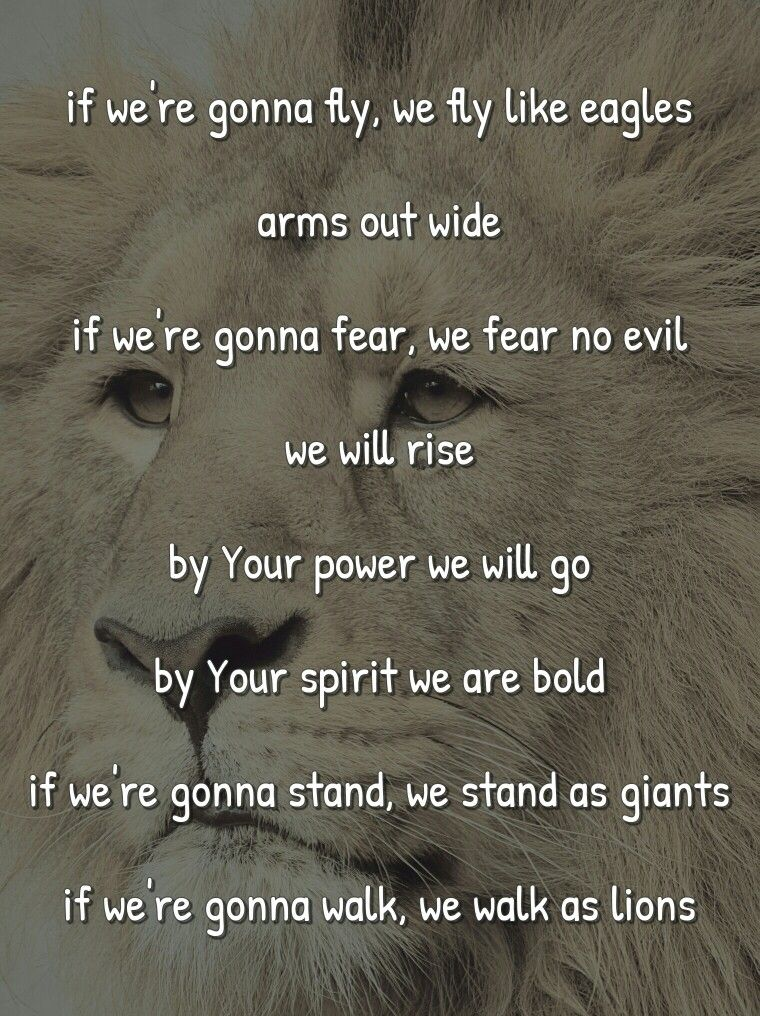 Lions by Skillet | Skillet | Pinterest | Skillet, Lions and ...