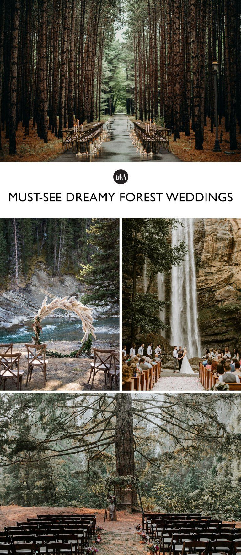 Head into the Woods with 14 Must-See Forest Weddings! | Green Wedding Shoes