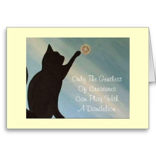 Sympathy Dog Quotes: Pet Sympathy Card - Cat (Kinky Friedman Quote)