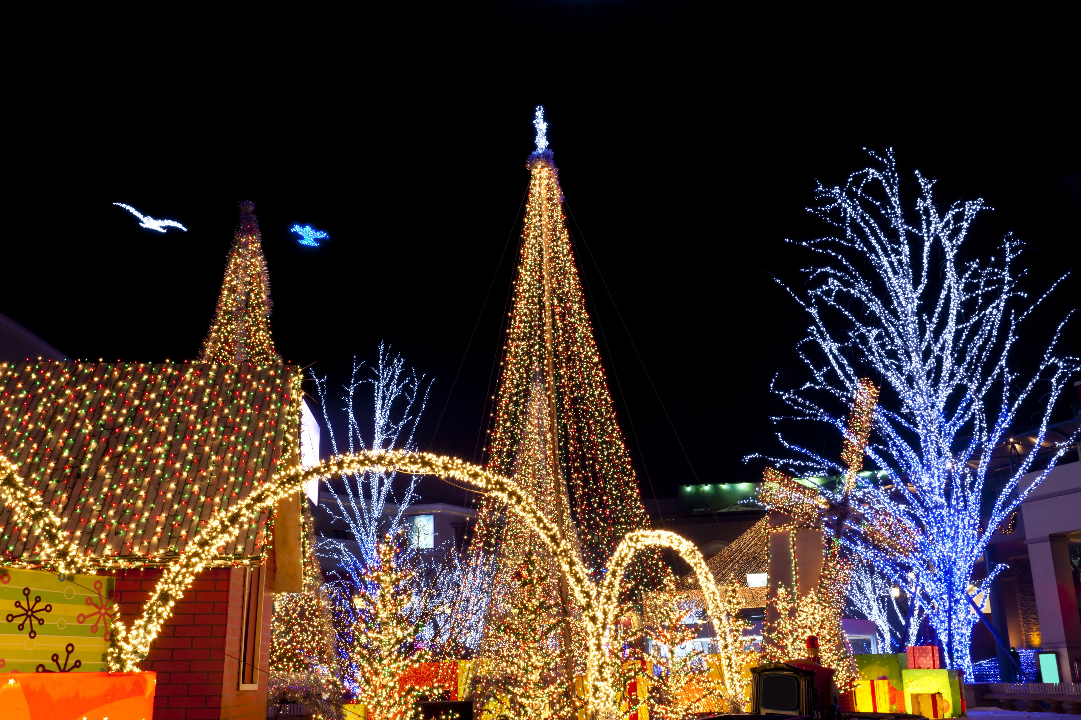 does milwaukee zoo have christmas lights christmaswalls co