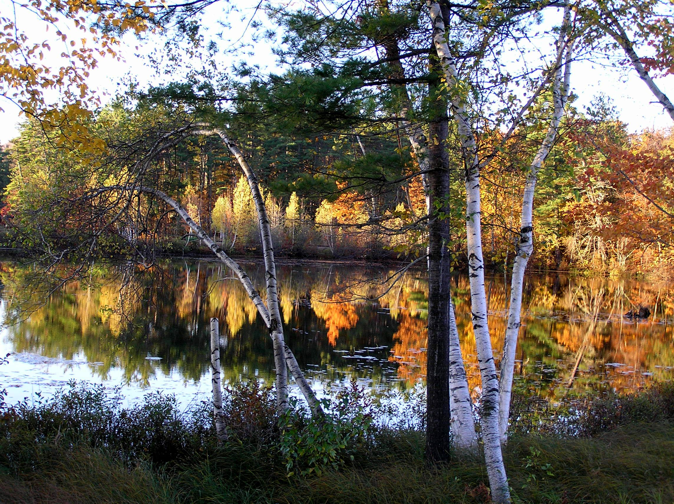 Fall in Maine - photo copyrighted by H. Joie Crockett