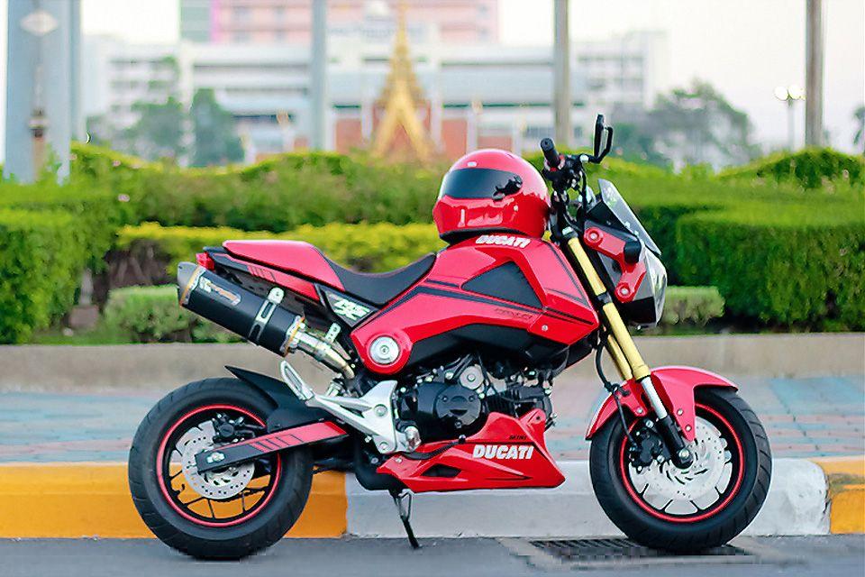 Honda-MSX-125-mini Ducati | M S X 1 2 5 / Grom | Pinterest | Ducati