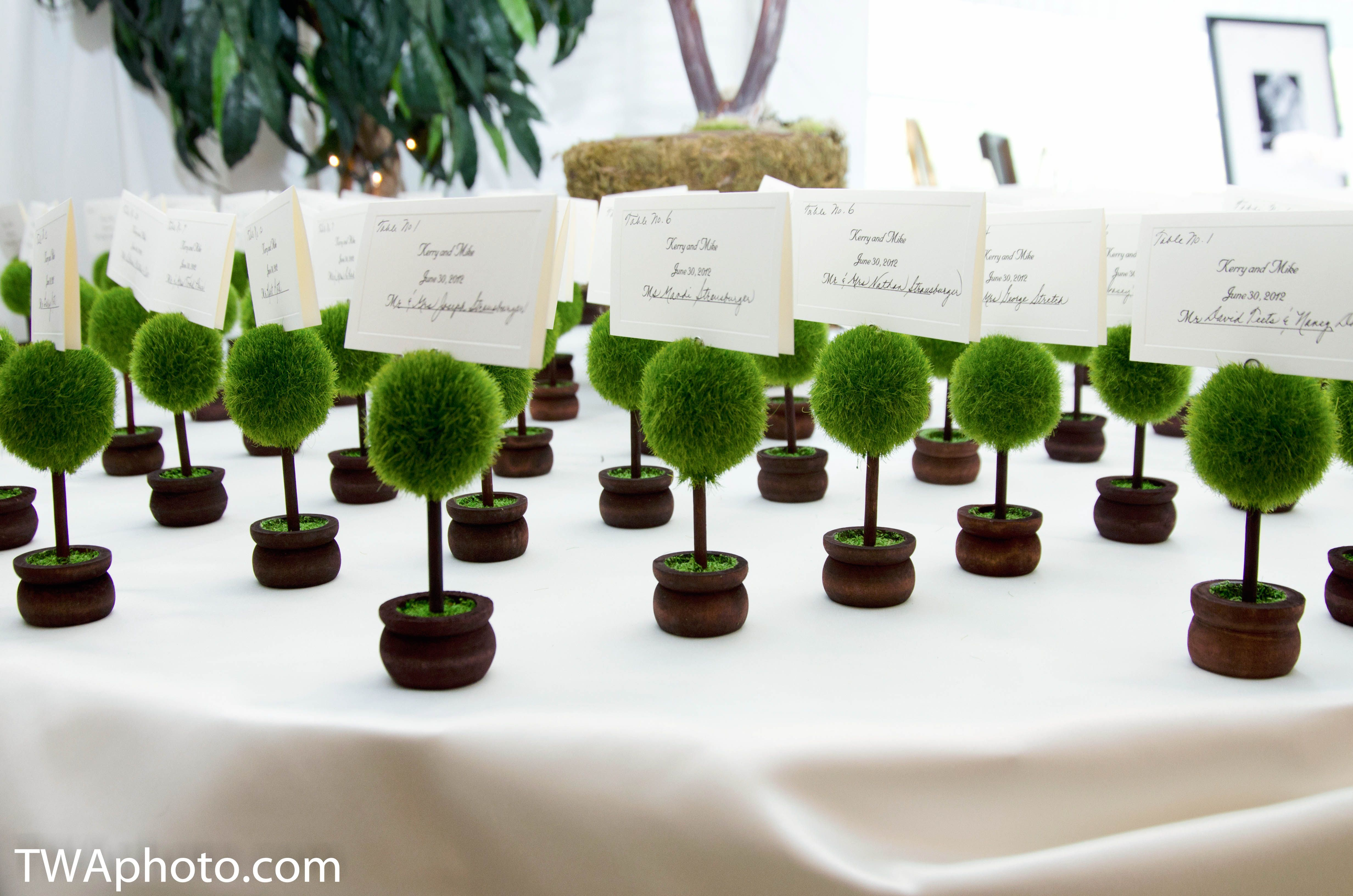 Great idea for placecard holders if you had an outdoor ceremony! #greenwedding www.twaphoto.com