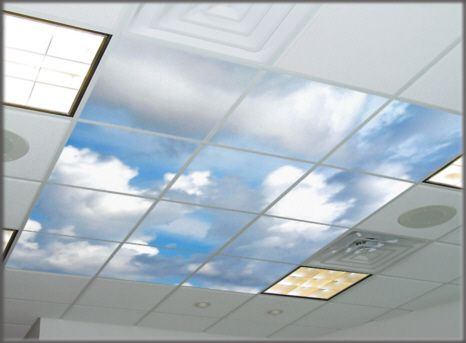 Drop Ceiling Decorative Tiles Ceiling Lens Light Lens Acoustic Tiles With Photos Printed On
