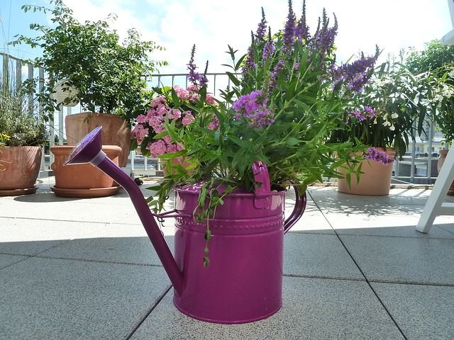 [watering can planters ideas]
