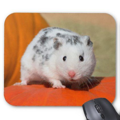 Cute Syrian Hamster White Black Spotted Funny Pet Mouse Pad