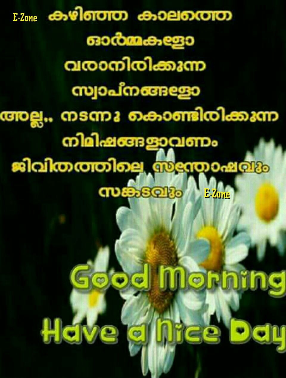 Pin By Eron On Good Morning Malayalam Morning Images Movie