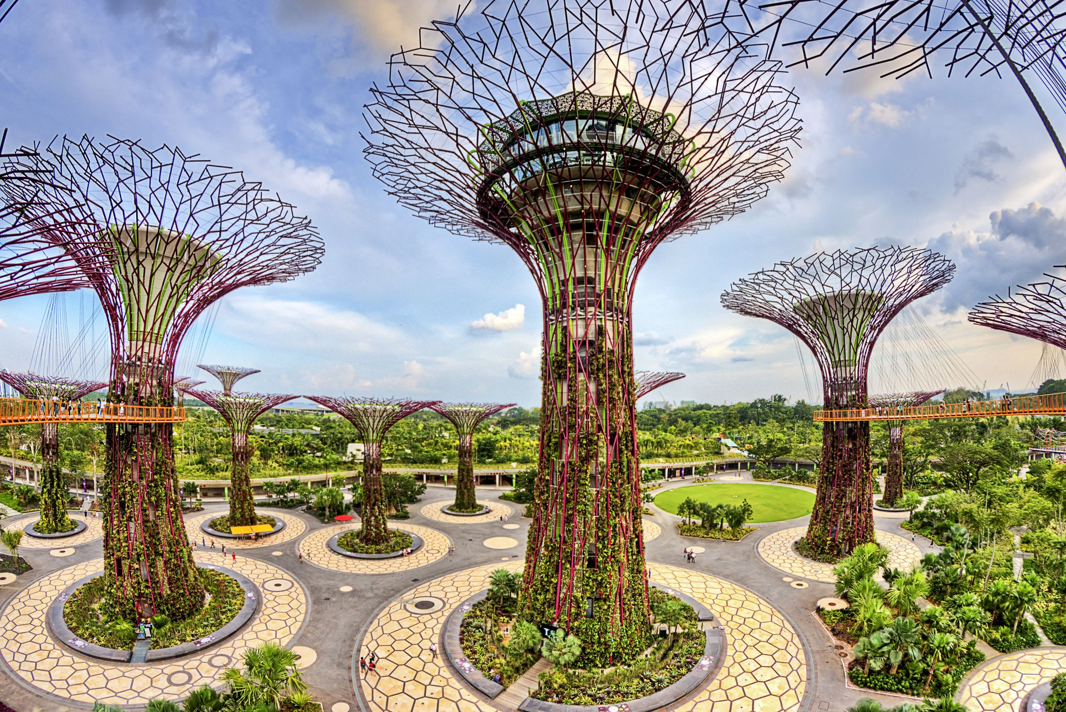 Gardens By The Bay Have A Glimpse Of This Beautifully Designed Green Space In Singapore Escape The C Honeymoon Tour Packages Honeymoon Tour Singapore Garden