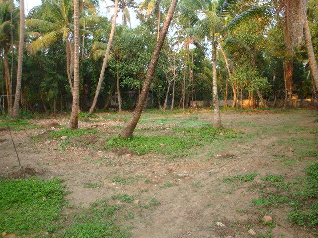 1 Acre Land For sale near Thiruvamkulam,Tripunithura Ernakulam