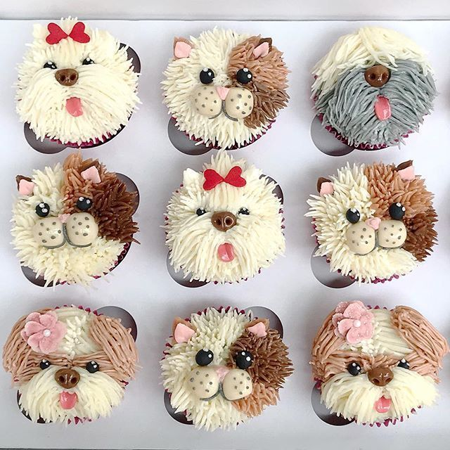"Jin Cho on Instagram: ""Puppies and kitties for the birthday girls. ��#cupcakes #pupcakes #dogcupcakes #catcupcakes #buttercream #cakeart"""