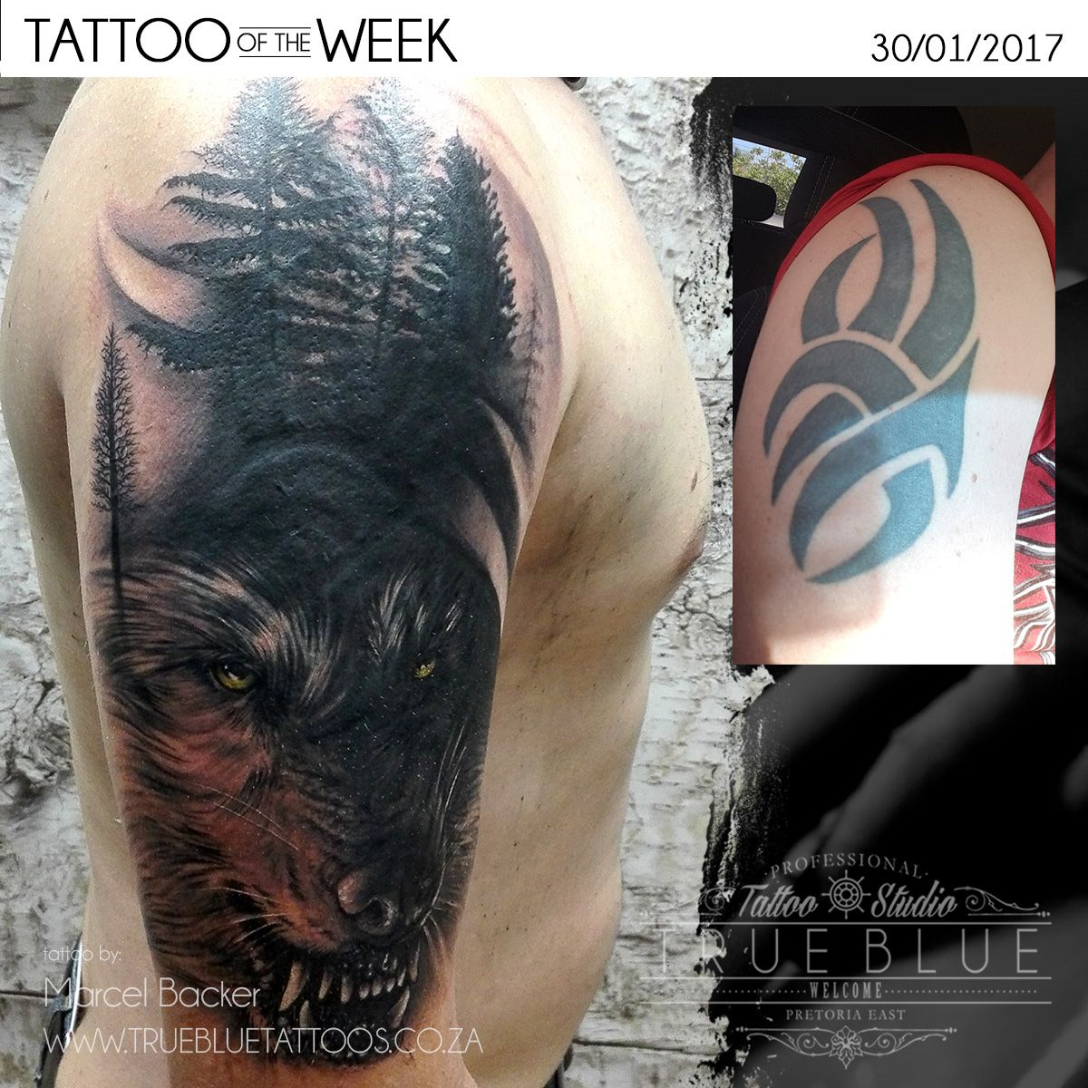 "Tattoo Of The Week: ""Wolf Cover Up"" by Marcel Backer of True Blue ..."