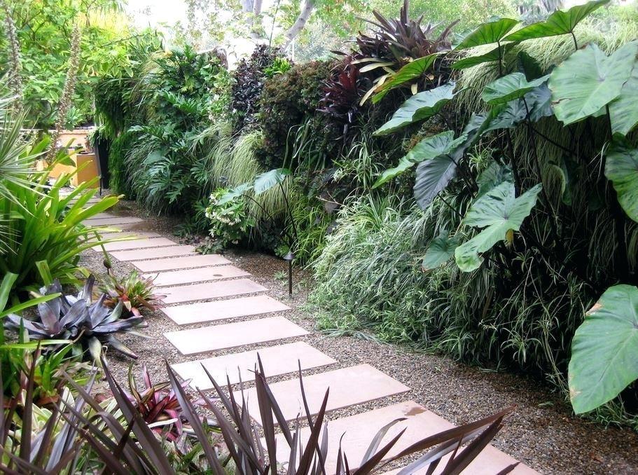 Amazing Tropical Garden Plants View In Gallery Green Wall In A Side Yard Tropical Garden Plants Perth Side Garden Side Yard Landscaping Tropical Garden Design