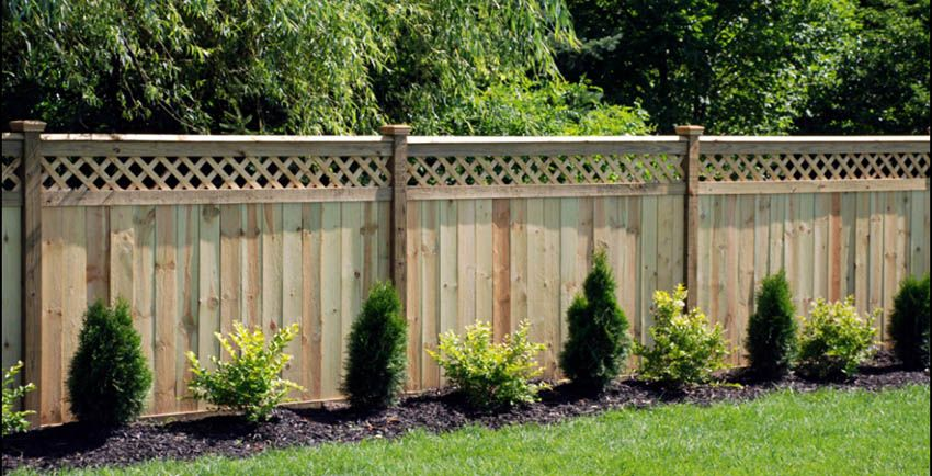 55 Lattice Fence Design Ideas Pictures Of Popular Types Privacy Fence Landscaping Lattice Fence Backyard Fences