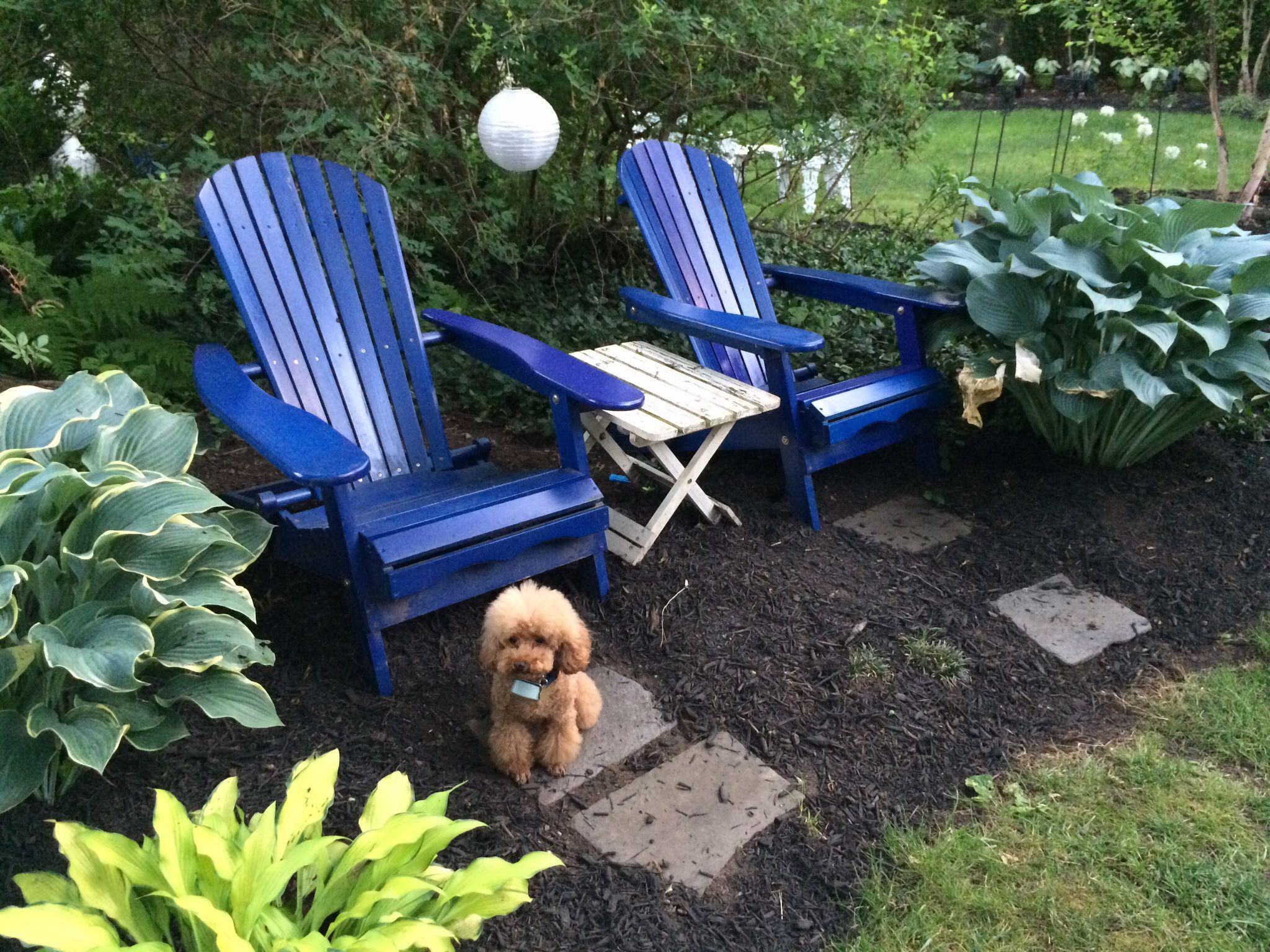 My Garden Helper Is Also A Pretty Good Garden Model. Donu0027t You Think