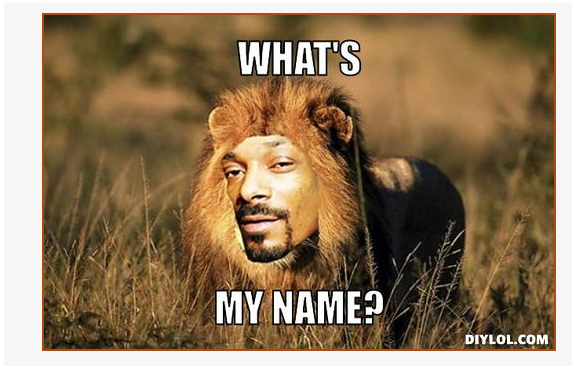 Memes of Snoop Dogg went viral when he changed his name to