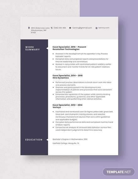 excel specialist resume template in 2020  resume template
