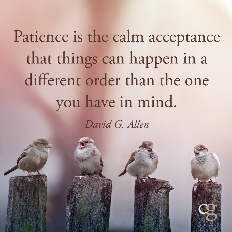 Calm Quotes: Patience Can Lead To Quietness