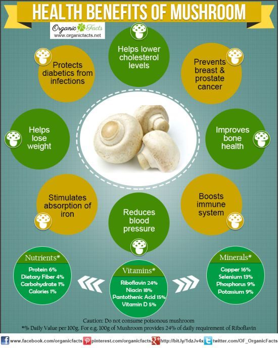Health Benefits of Mushrooms  Organic Facts Health benefits of mushrooms include relief from high cholesterol levels breast cancer prostate cancer and diabetes It also he...