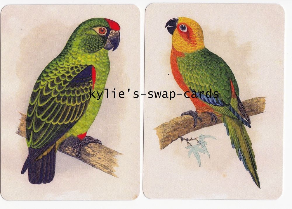 SD14 PAIR BIRDS swap playing cards MINT CONDITION perching parrots COLOURFUL #2
