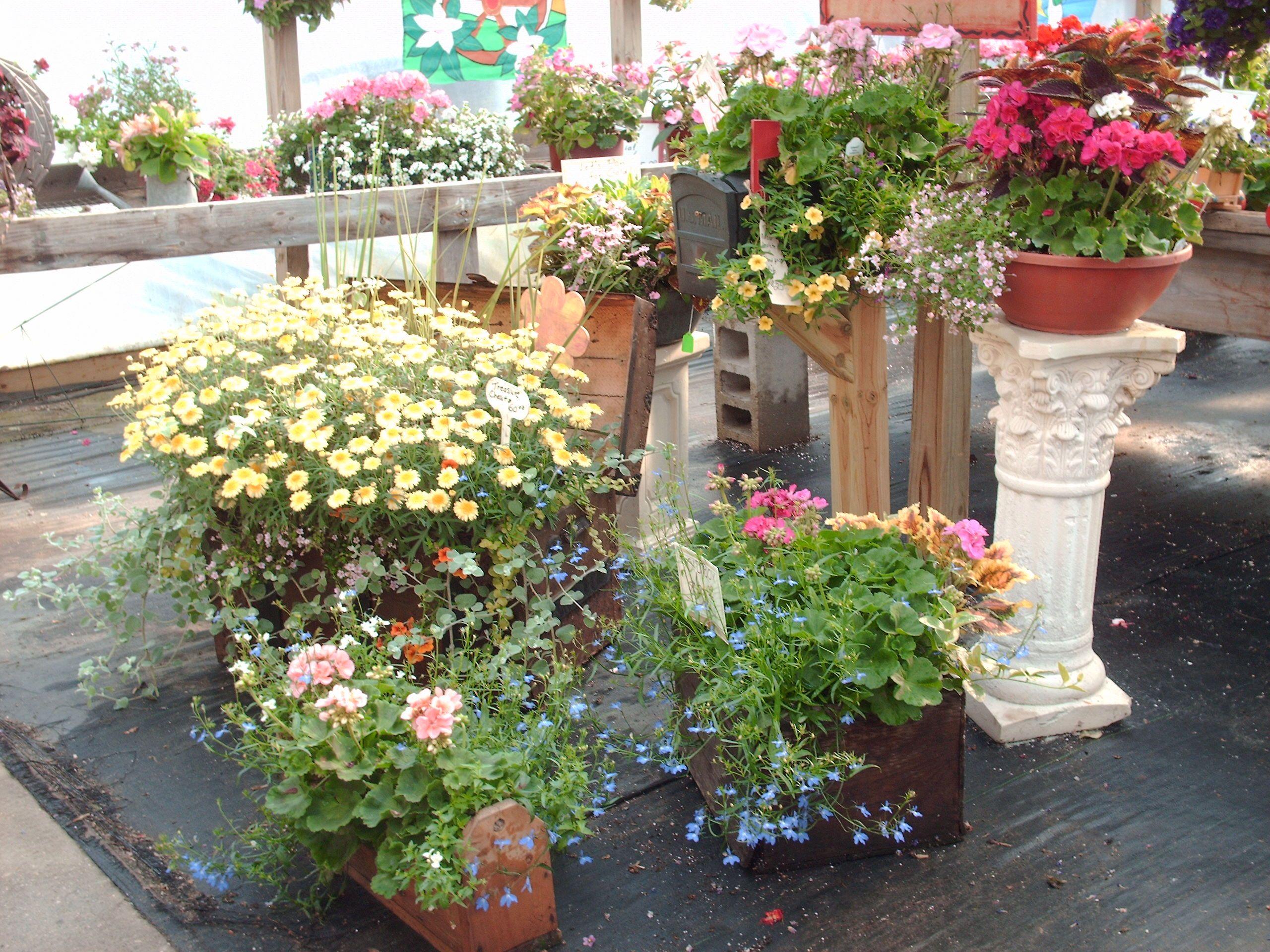 Gustafsonu0027s Greenhouse And Garden Essentials, Ludington, ...