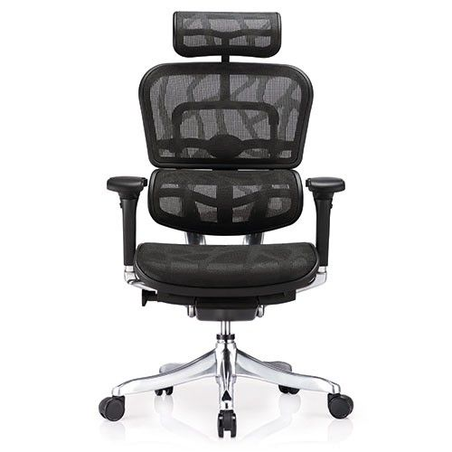 Ergohuman Plus Deluxe Mesh Office Chair Ultimate Edition