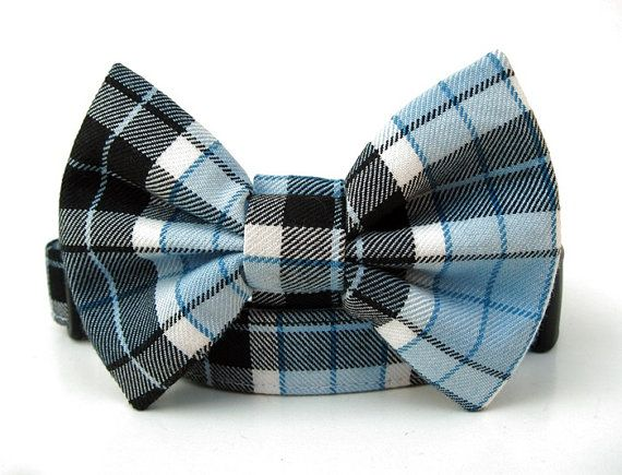 Plaid Bow Tie Dog Collar in Black Sky Blue and White