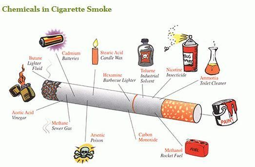 If You Think Cigarettes Are Simply Dried Tobacco Leaves Rolled In Paper Youre About 599 Ingredients Off The Industry Has Become Master