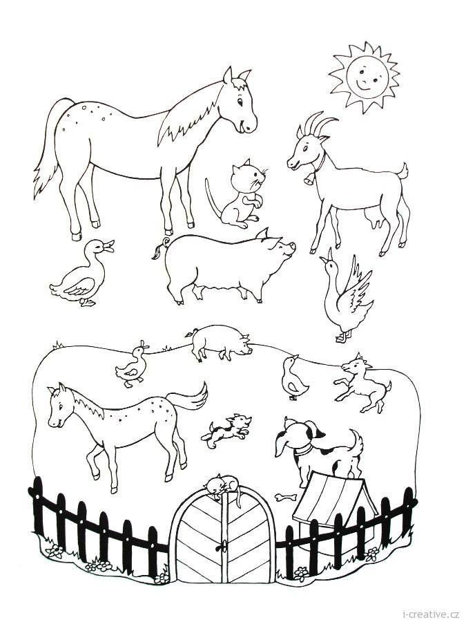 Zvířátka   Pracovní listy   Pinterest   Animales para pintar ...