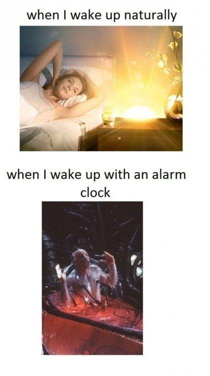 Waking up naturally vs Alarm clock