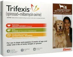 Deadly Flea And Tick Medications Fleas Pet Health Dogs