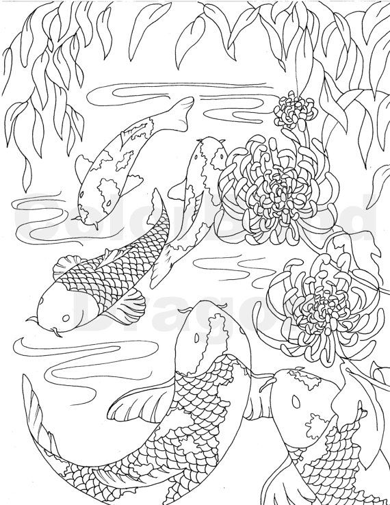 Fish Coloring Page Koi Coloring Page Japanese Coloring Page Pond Ocean Water Orange White Swim Carp Fish Coloring Page Koi Fish Drawing Coloring Pages