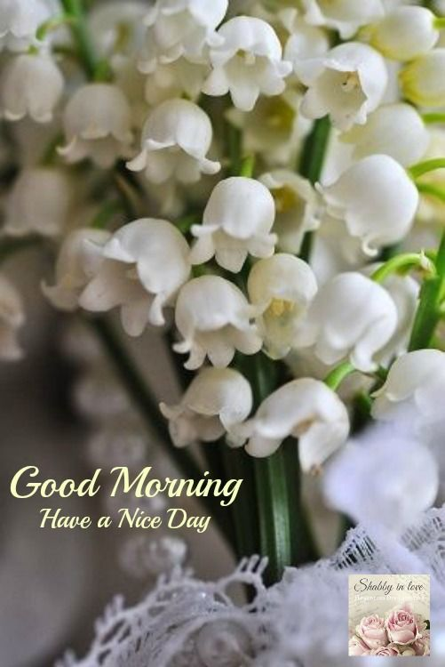Good Morning French Decorative Objects Lily Of The Valley