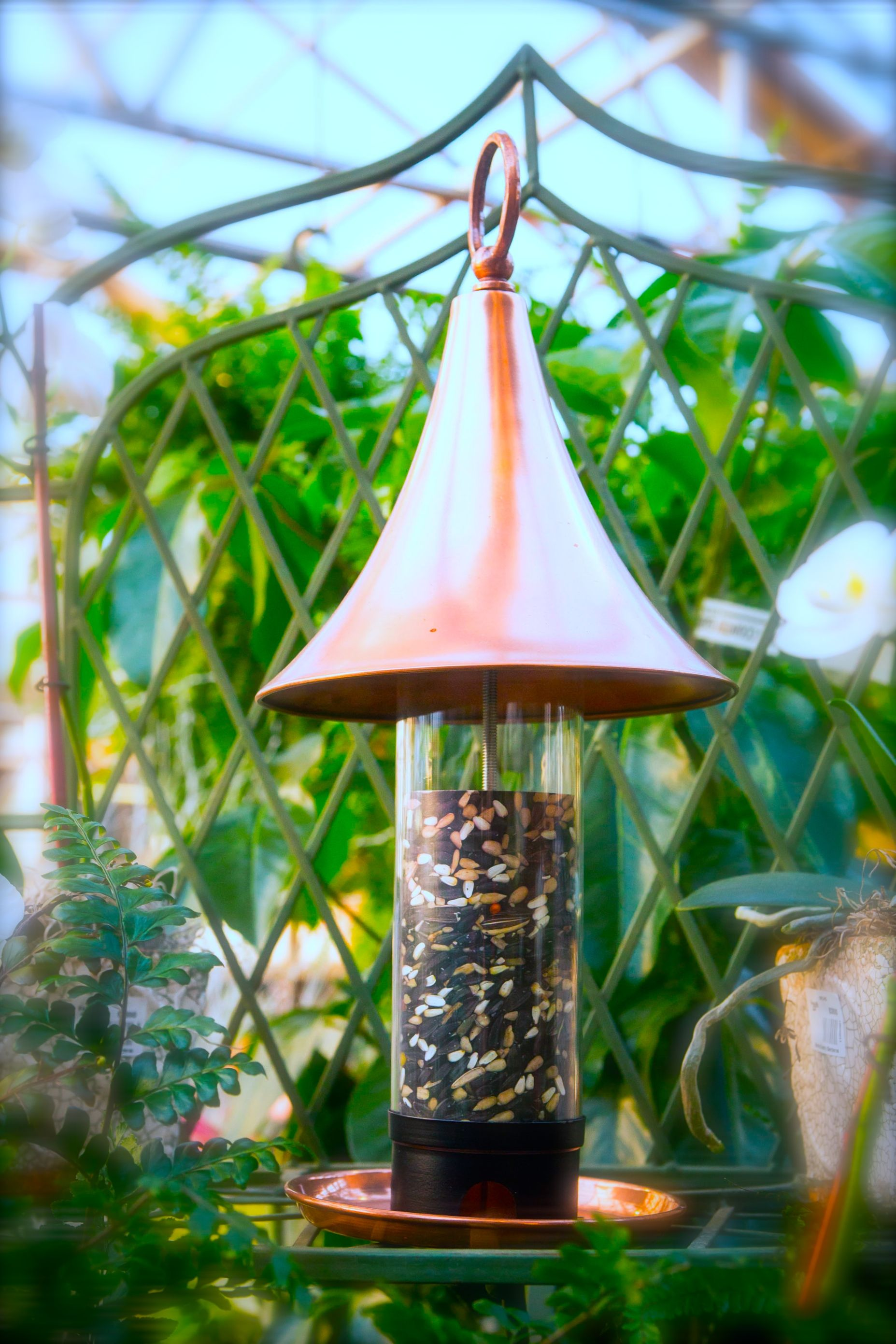 Keep Track Of When You Need To Refill Your Bird Feeder With This See Through  Feeder, Available At Bucks Country Gardens, Doylestown PA. #birds