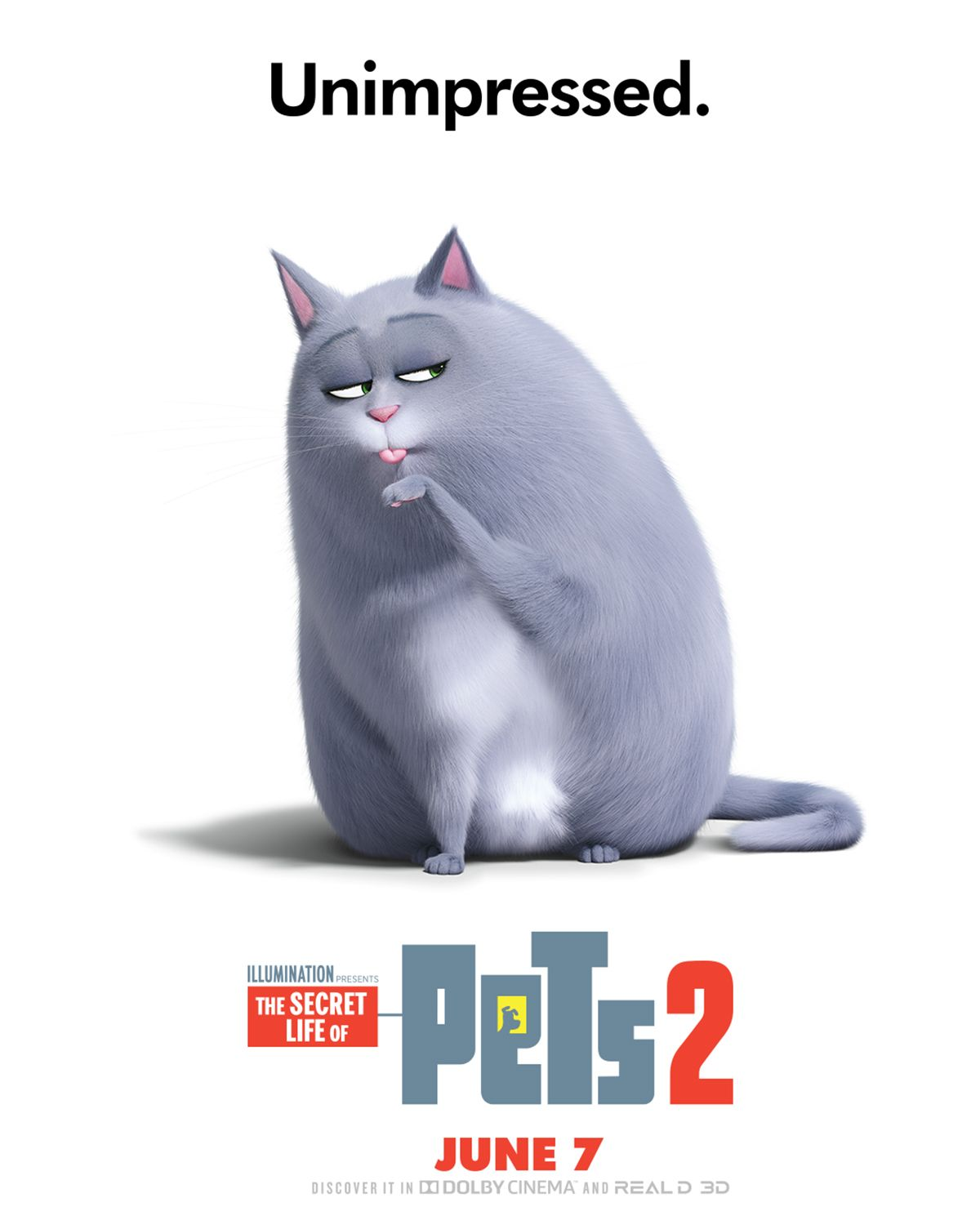 Lake Bell Is Chloe The Pets Return This Summer In The New Movie The Secret Life Of Pets 2 Coming To Theaters June 7 20 Secret Life Of Pets Pets Secret Life