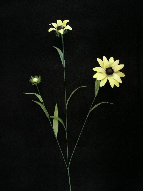 Handwrap daisy yellow lot of 12 pinterest silk flowers craft handwrap daisy yellow lot of 12 warehouse craft supplies mightylinksfo