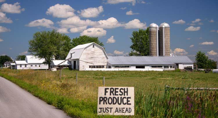 A Peek Inside the Amish Farms of the NY Finger Lakes | Amish