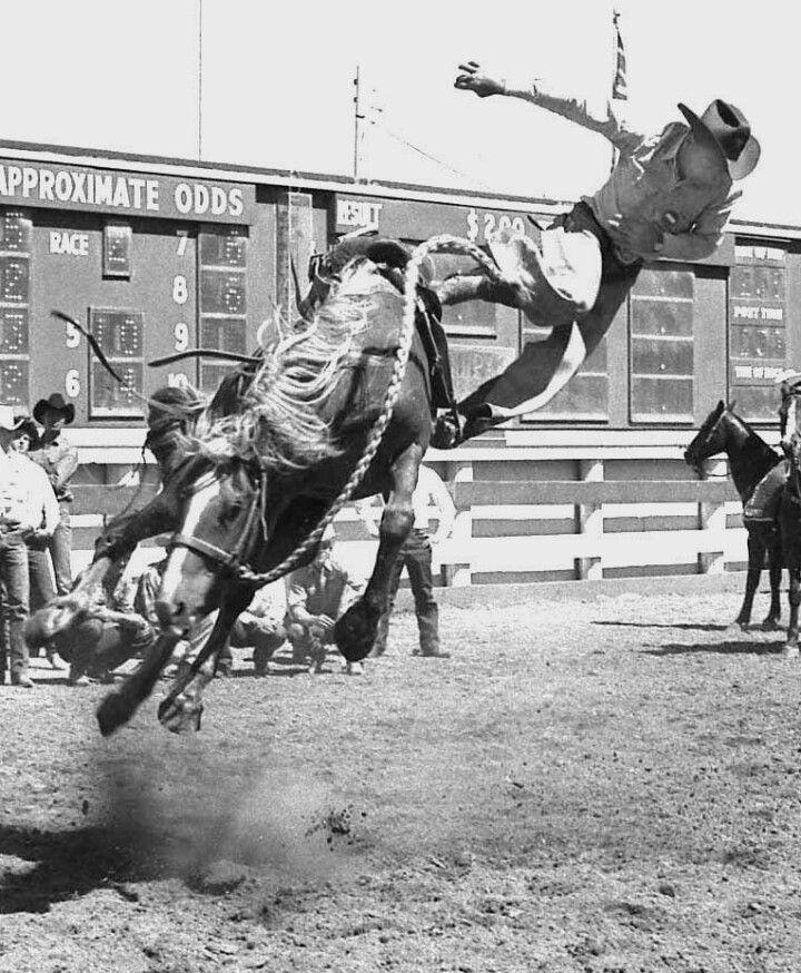 Gay cowboys in action