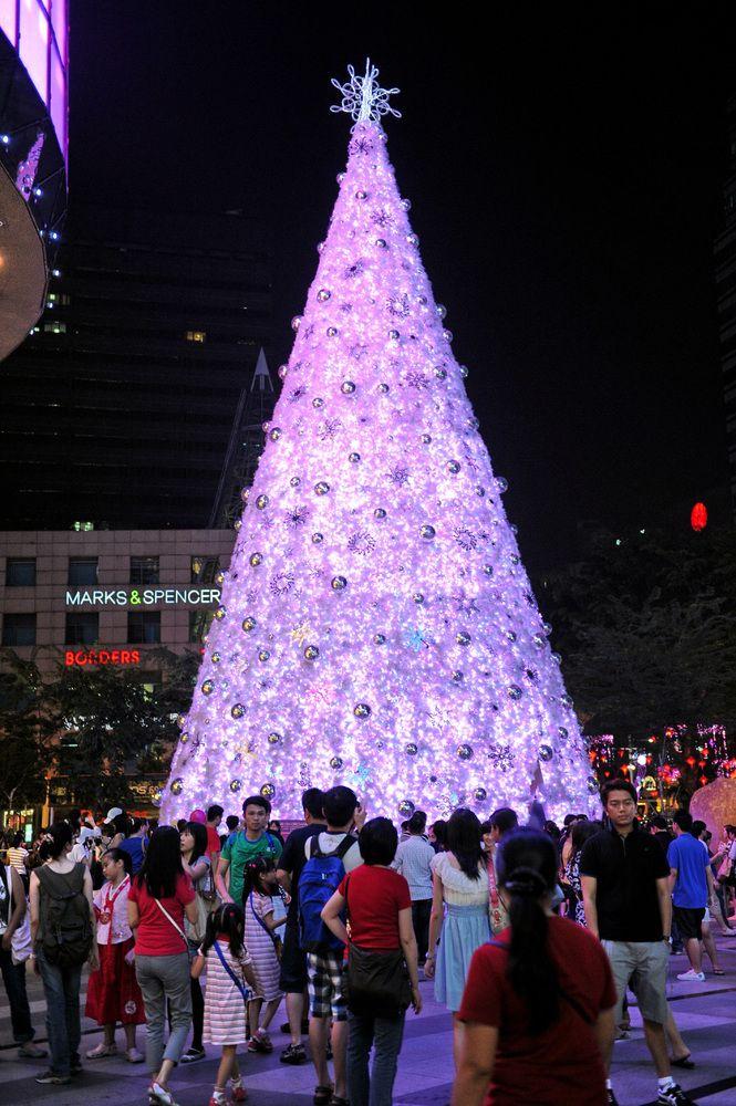15 Extreme Christmas Trees Unusual Christmas Trees Christmas Tree Pictures Christmas