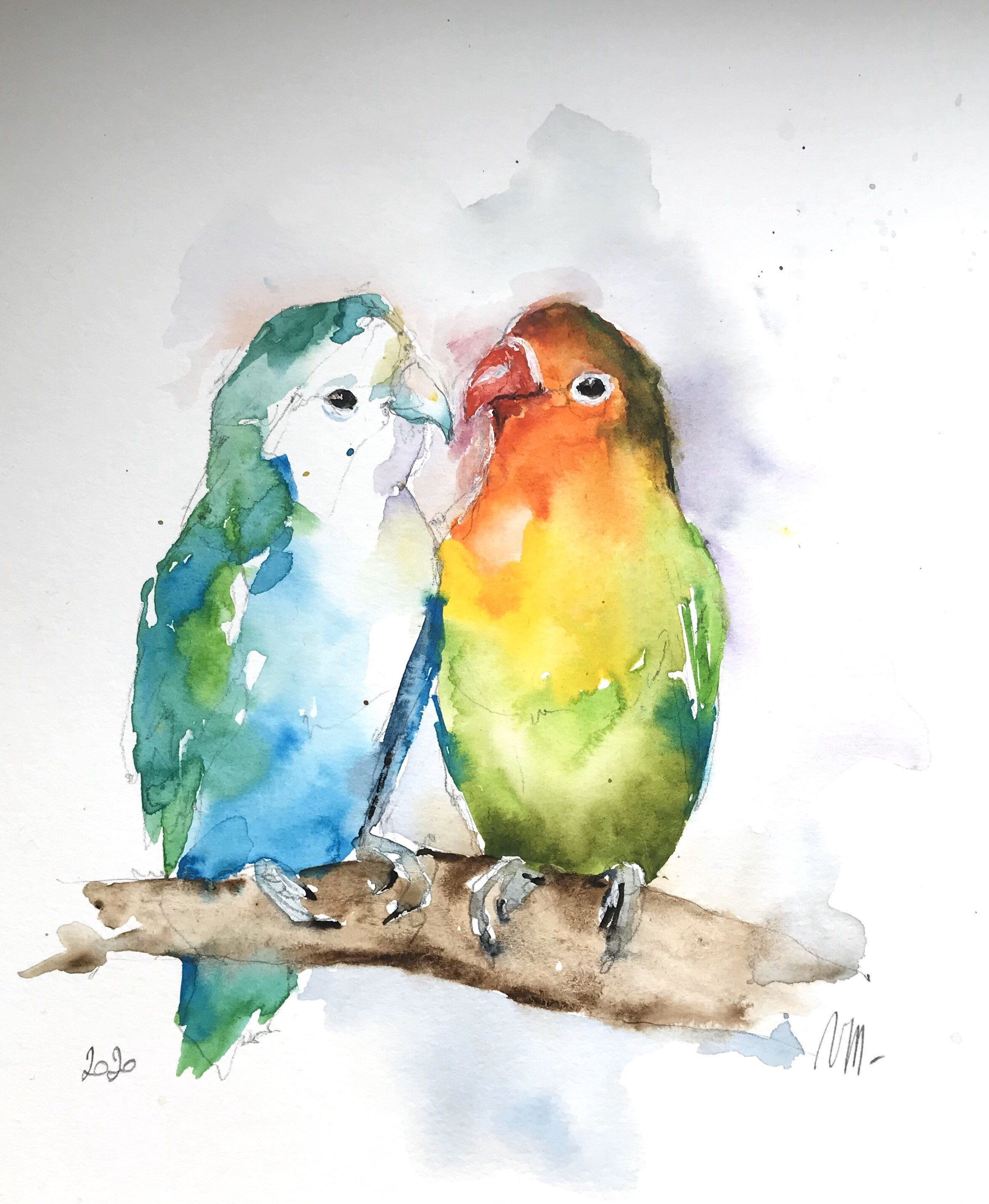 Aquarelle Originale Perruches Oiseaux Exotiques Animal