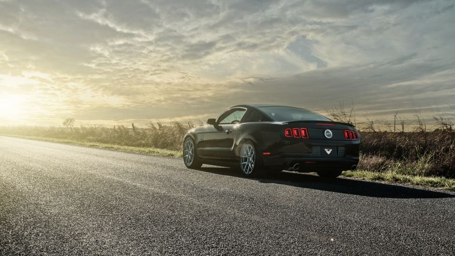 Ford Mustang Gt Free Download Hd Wallpapers Hd Wallpapers Co