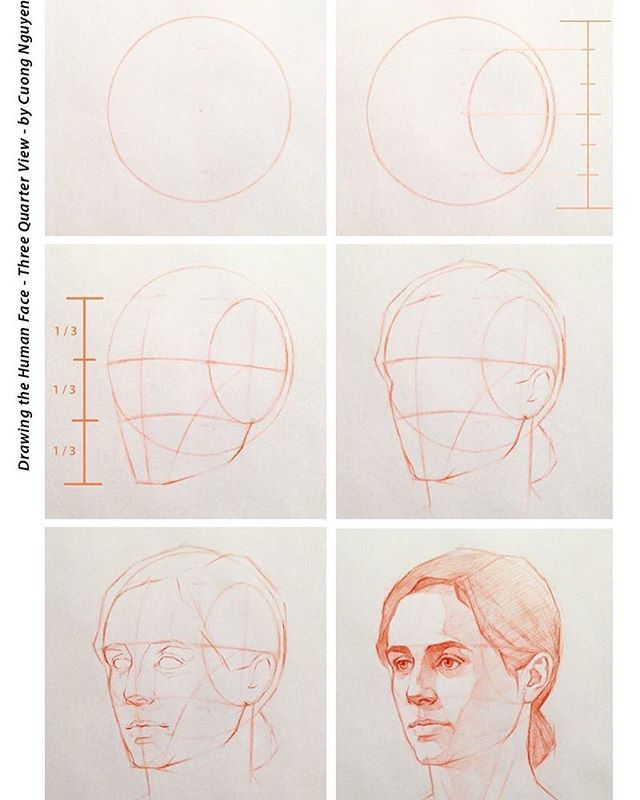 Drawing woman face in three quarter view artacademy artteacher arttutorial artwork artstudent threequaterview faceporportions howto also reference art techniques tools theory drawings rh pinterest