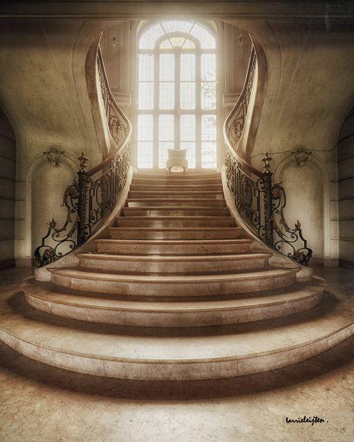 Escalier duloup / silent witnesses.