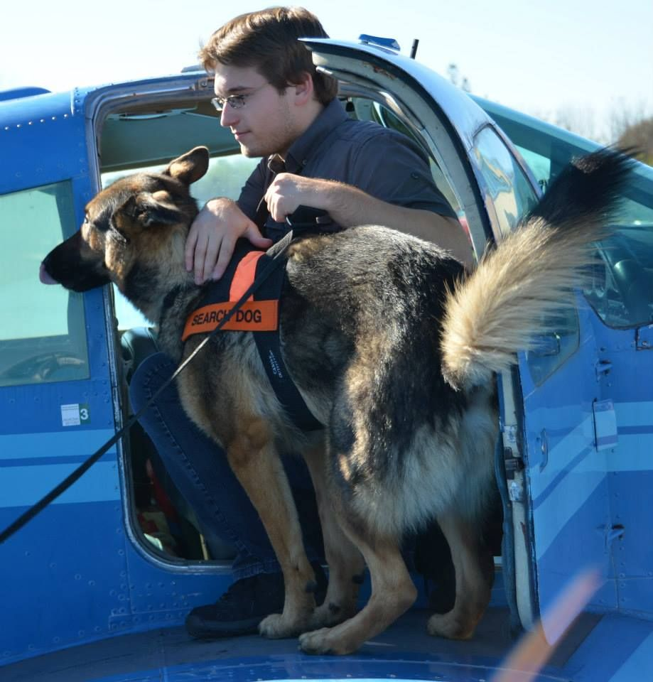 Pilots N Paws Canada Assists Search And Rescue Dog Training
