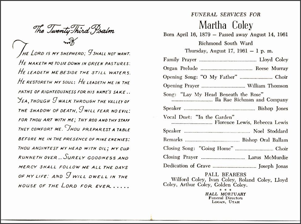 Funeral Planning Checklist Template Fresh 5 Funeral