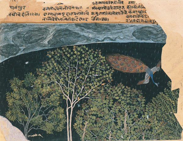 Peacock in a Rainstorm at Night, late 16th century. India, Northern Deccan. Non-Islamic, Hindu. Ink, opaque watercolor, and gold on paper; 6 1/8 x 7 1/2 in. (15.5 x 19 cm). Private Collection, London