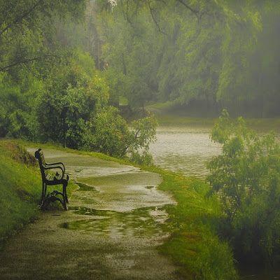 Beautiful Rain Nature Rain Wallpapers Photography Inspiration Nature Nature Photography