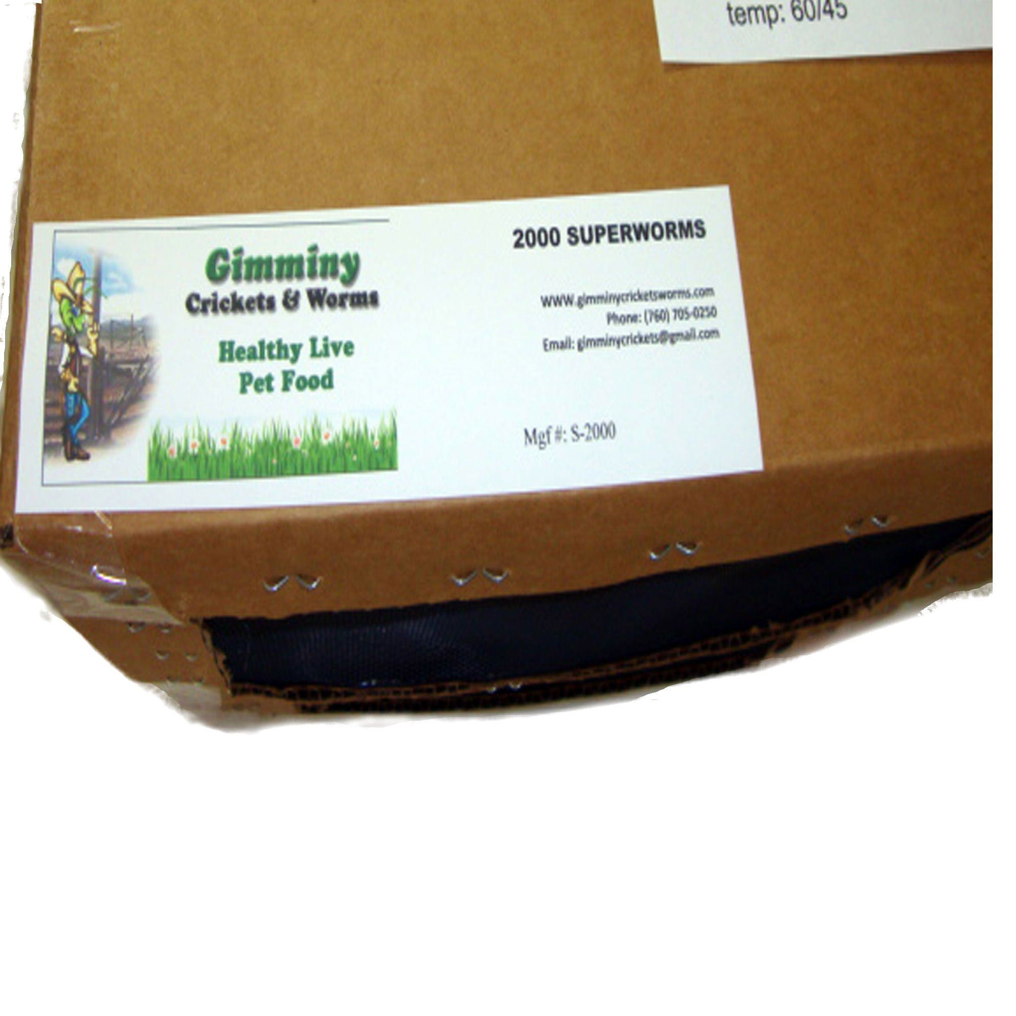 2100 Live Mealworms Organically Grown By Gimminy Crickets Food Animals Reptile Food Cricket