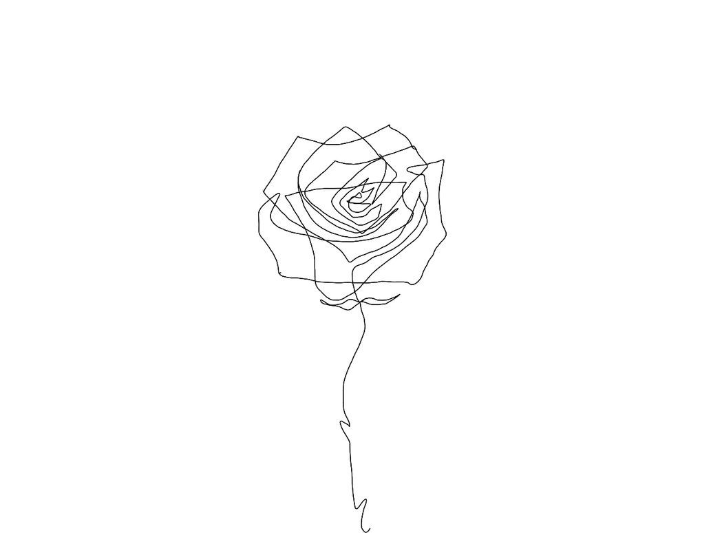 Image Result For One Line Flower Drawing Flower Drawing Roses Drawing Line Drawing Tattoos