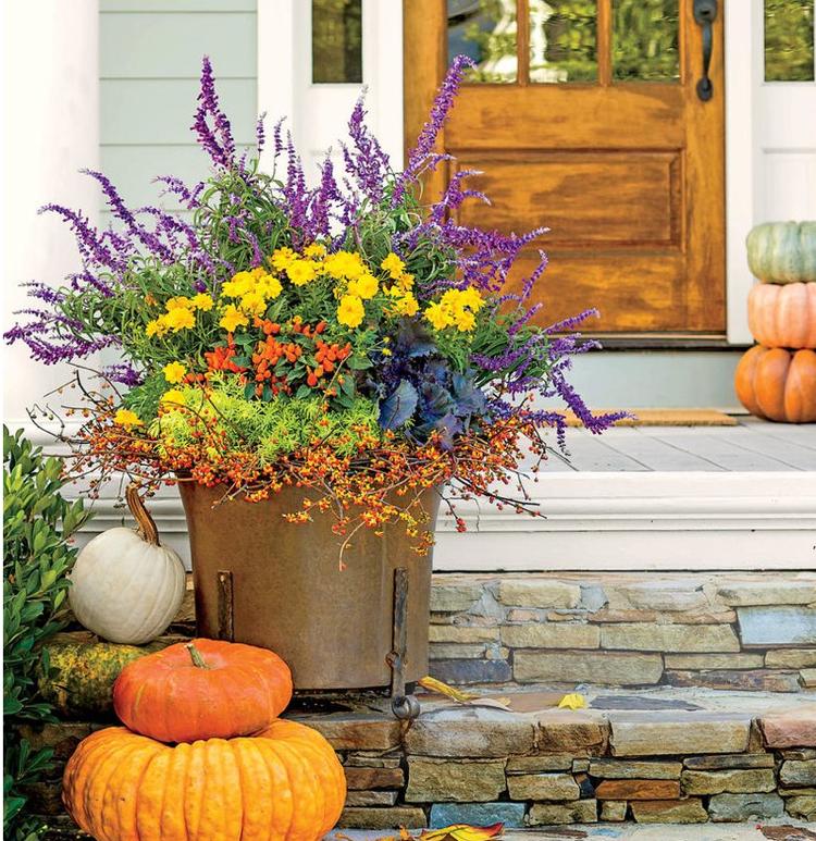 gro e k bel bepflanzen herbst hauseingang terrasse treppen gartenarbeit und pflege pinterest. Black Bedroom Furniture Sets. Home Design Ideas